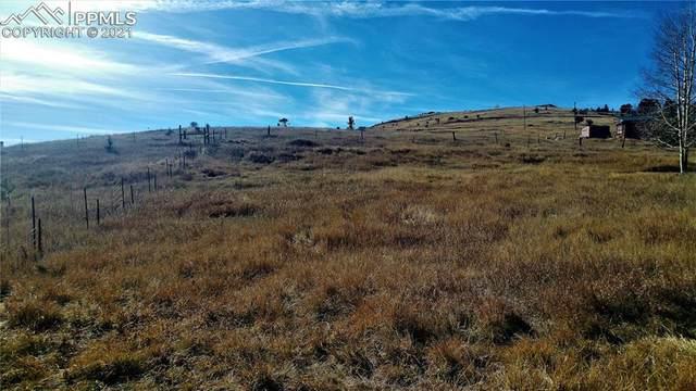 TBD Thurlow Avenue, Cripple Creek, CO 80813 (#8471995) :: Colorado Home Finder Realty