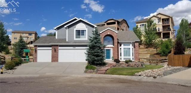 759 Witchhazel Court, Colorado Springs, CO 80921 (#8473227) :: The Peak Properties Group