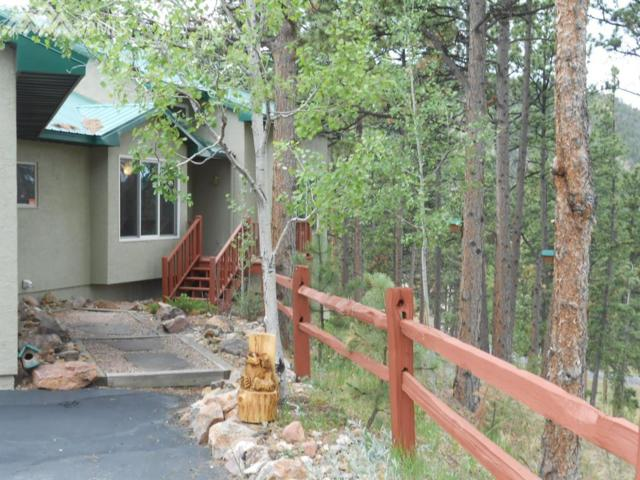 625 Sunny Glen Court, Woodland Park, CO 80863 (#8473716) :: Fisk Team, RE/MAX Properties, Inc.