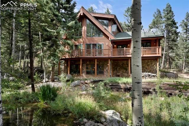 6365 Waterfall Loop, Manitou Springs, CO 80829 (#8474950) :: The Treasure Davis Team | eXp Realty