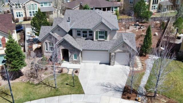10035 Pine Glade Drive, Colorado Springs, CO 80920 (#8478241) :: Perfect Properties powered by HomeTrackR