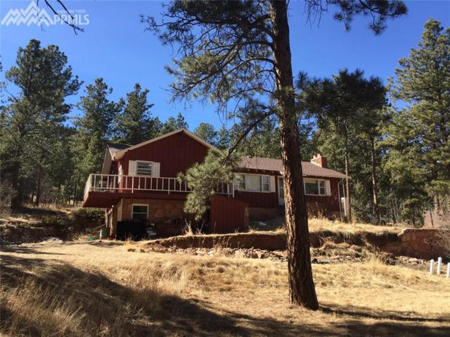 1351 County 21 Road, Woodland Park, CO 80863 (#8480179) :: 8z Real Estate