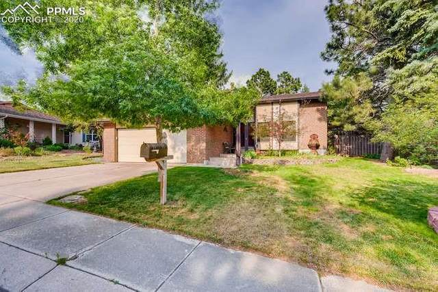 3015 Nevermind Lane, Colorado Springs, CO 80917 (#8480473) :: Tommy Daly Home Team