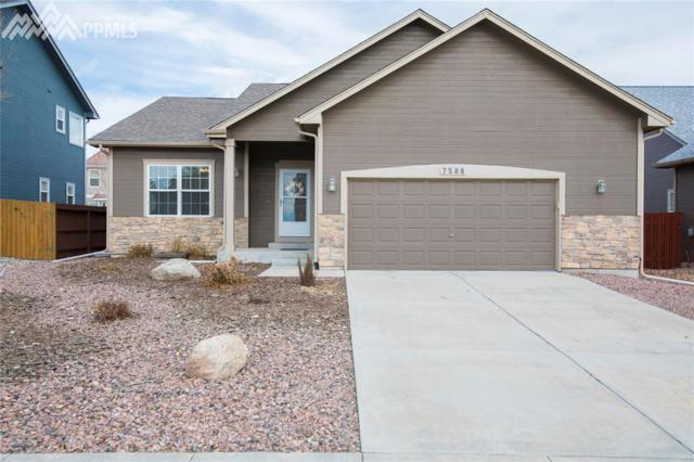 7588 Chenoa Court, Colorado Springs, CO 80915 (#8481693) :: Action Team Realty