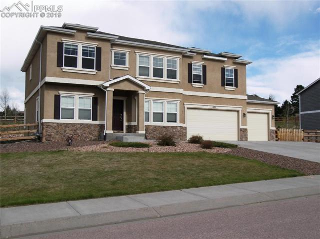 695 Woodmoor Acres Drive, Monument, CO 80132 (#8483268) :: Action Team Realty