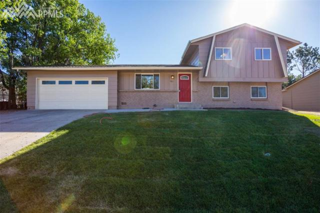 1363 Hiawatha Drive, Colorado Springs, CO 80915 (#8483355) :: 8z Real Estate