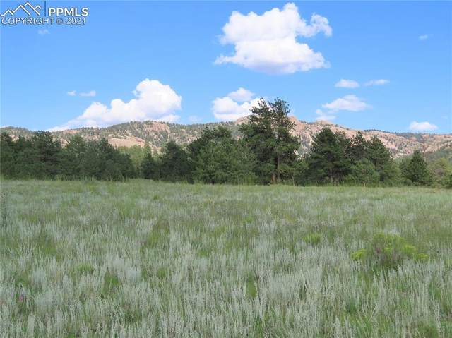 37 Surrey Road, Florissant, CO 80816 (#8485398) :: Action Team Realty