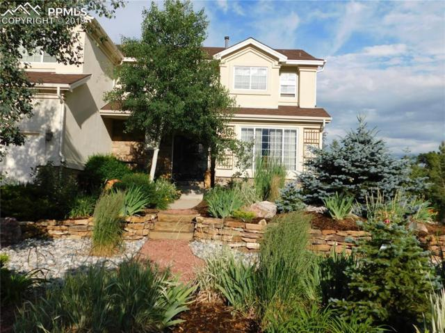 1097 Prickly Pear Place, Colorado Springs, CO 80921 (#8485459) :: Action Team Realty