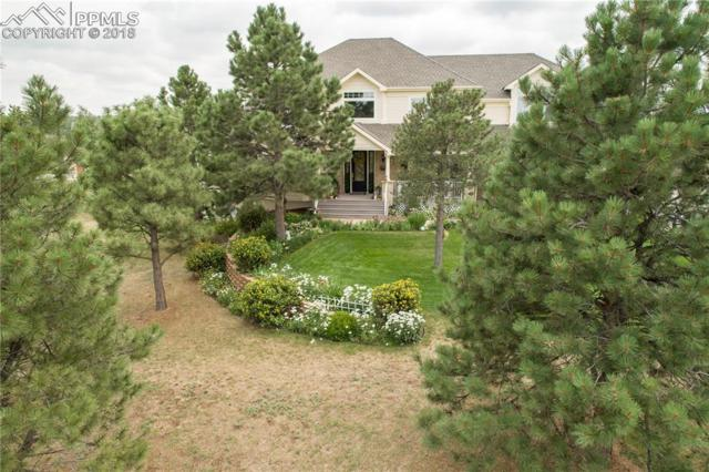 865 E Kings Deer Point, Monument, CO 80132 (#8486697) :: Jason Daniels & Associates at RE/MAX Millennium