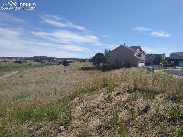 17230 Park Trail Drive, Monument, CO 80132 (#8494699) :: The Treasure Davis Team