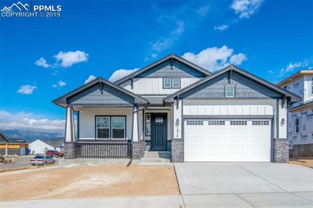 11914 Red Bullet Lane, Colorado Springs, CO 80921 (#8511738) :: Compass Colorado Realty