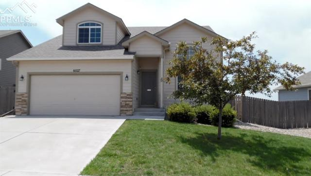 6027 Passing Sky Drive, Colorado Springs, CO 80911 (#8512571) :: The Treasure Davis Team