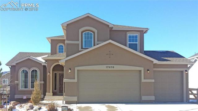 17970 Gypsum Canyon Court, Monument, CO 80132 (#8513726) :: The Treasure Davis Team