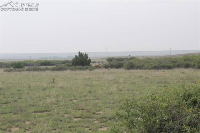 Lot 71 Lascar Road, Rye, CO 81069 (#8517141) :: Action Team Realty