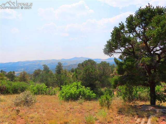 493 Cheyenne Drive, Florissant, CO 80816 (#8517473) :: Tommy Daly Home Team