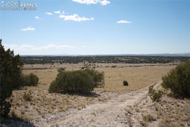 Highway 350, La Junta, CO 81050 (#8520520) :: Colorado Home Finder Realty