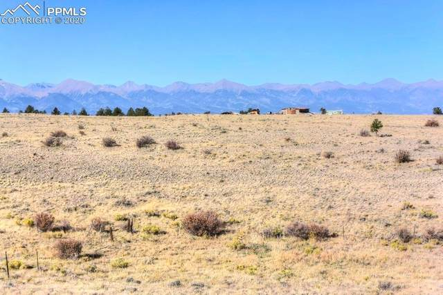 2235 Music Mountain Drive, Westcliffe, CO 81252 (#8520818) :: The Kibler Group