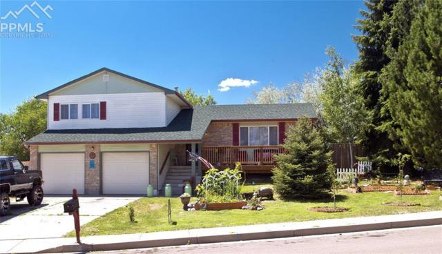 7115 Painted Rock Drive, Colorado Springs, CO 80911 (#8523747) :: The Peak Properties Group