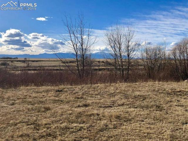 00 Log Road, Peyton, CO 80831 (#8526784) :: The Daniels Team