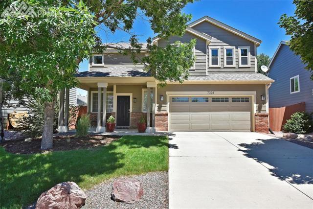 7024 Mcewan Street, Colorado Springs, CO 80922 (#8532224) :: CENTURY 21 Curbow Realty