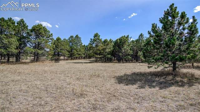 16570 Great Smokey Avenue, Elbert, CO 80106 (#8532281) :: Tommy Daly Home Team