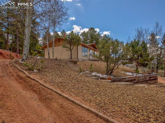 935 Forest Edge Place, Woodland Park, CO 80863 (#8533035) :: The Daniels Team