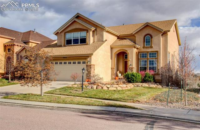 9883 Red Sage Drive, Colorado Springs, CO 80920 (#8536144) :: Jason Daniels & Associates at RE/MAX Millennium