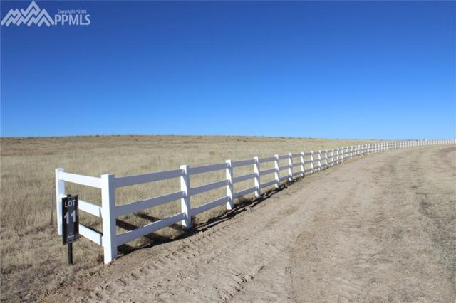 18385 Prairie Coach View, Calhan, CO 80808 (#8544961) :: 8z Real Estate