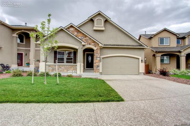 7525 Shallow Brook Place, Colorado Springs, CO 80922 (#8545637) :: 8z Real Estate
