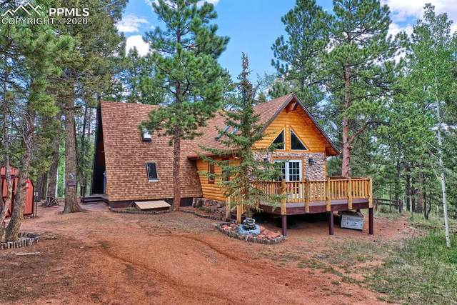 219 W Lake Drive, Divide, CO 80814 (#8545938) :: Action Team Realty