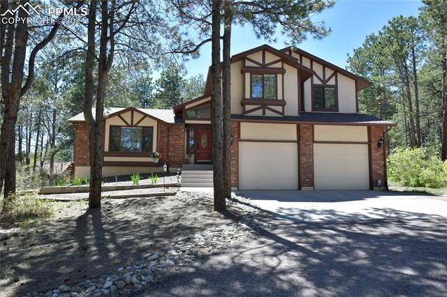 19730 W Top O The Moor Drive, Monument, CO 80132 (#8548259) :: Fisk Team, RE/MAX Properties, Inc.