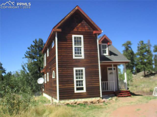 65 Spanish Bit Drive, Lake George, CO 80827 (#8549329) :: Tommy Daly Home Team
