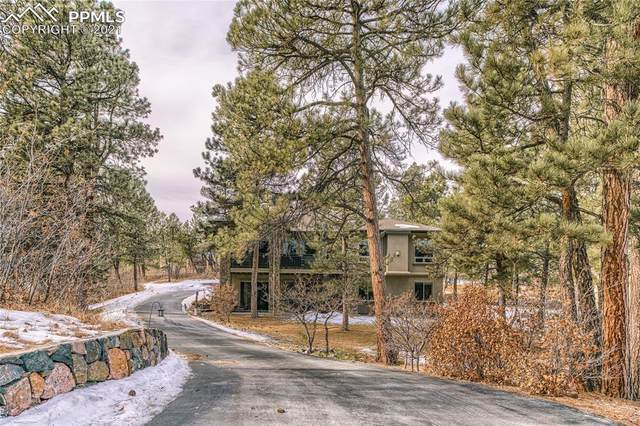 570 Independence Drive, Larkspur, CO 80118 (#8549918) :: Fisk Team, RE/MAX Properties, Inc.