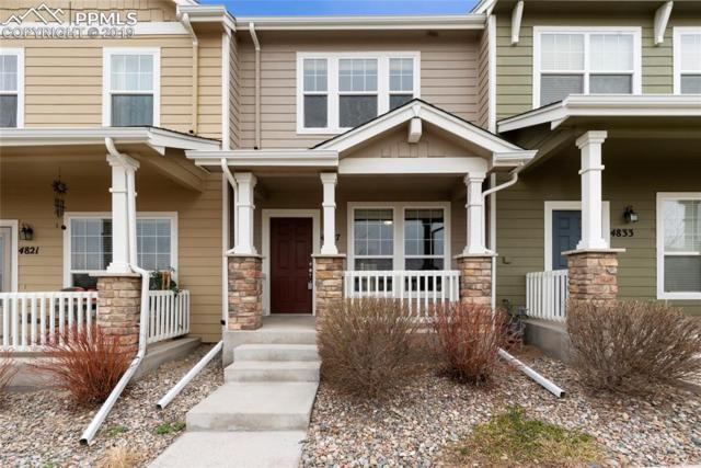 4827 Condor Creek Point, Colorado Springs, CO 80916 (#8551531) :: Action Team Realty