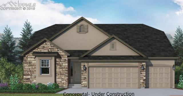 16464 Corkbark Terrace, Monument, CO 80132 (#8553844) :: Colorado Home Finder Realty