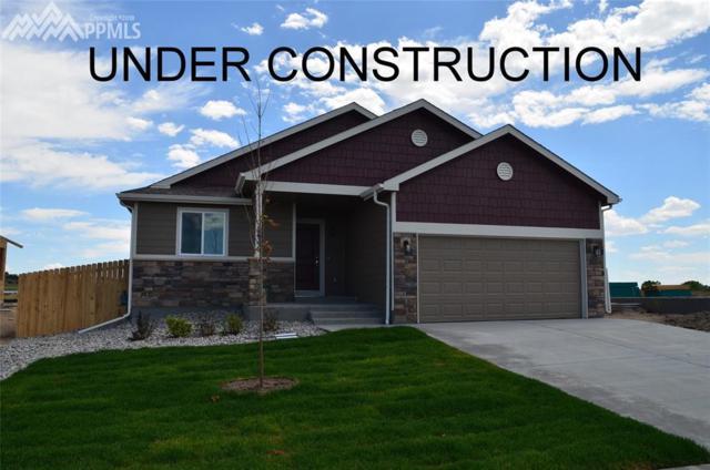9845 Rubicon Drive, Colorado Springs, CO 80925 (#8554044) :: Jason Daniels & Associates at RE/MAX Millennium