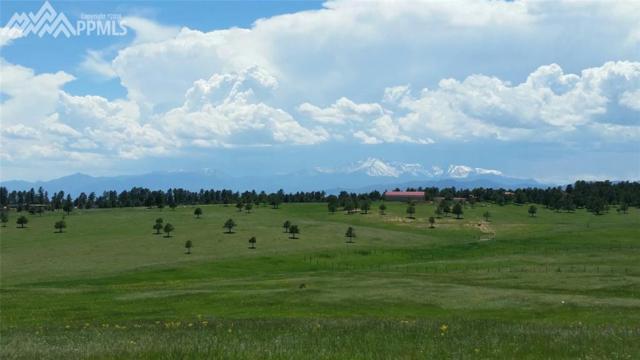 16375 Open Sky Way, Colorado Springs, CO 80908 (#8561655) :: The Hunstiger Team