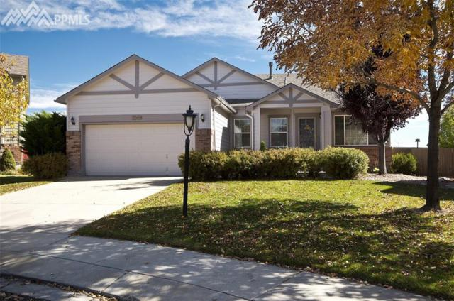 3569 Painted Daisy Court, Colorado Springs, CO 80920 (#8562781) :: RE/MAX Advantage