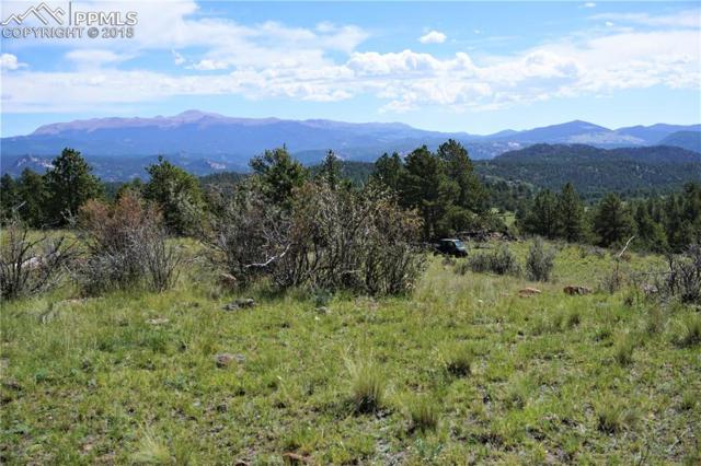 TBD County 12 Road, Florissant, CO 80816 (#8562841) :: 8z Real Estate