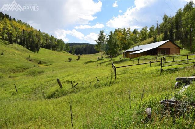7075 Highway 165 Highway, Wetmore, CO 81253 (#8562969) :: The Treasure Davis Team