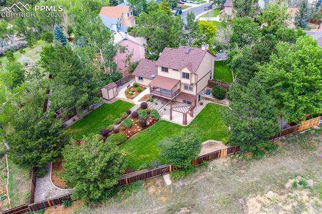 6520 Holt Drive, Colorado Springs, CO 80922 (#8568649) :: Tommy Daly Home Team