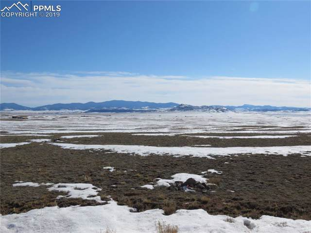 9248 Larimer Road, Hartsel, CO 80449 (#8569017) :: 8z Real Estate