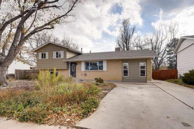 1240 Osgood Road, Colorado Springs, CO 80915 (#8575731) :: Venterra Real Estate LLC