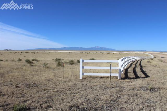 18605 Prairie Coach View, Calhan, CO 80808 (#8576197) :: Jason Daniels & Associates at RE/MAX Millennium