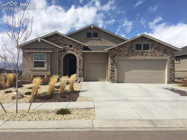 10804 Forest Creek Drive, Colorado Springs, CO 80908 (#8577208) :: The Daniels Team