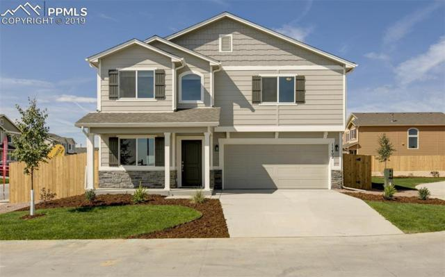 11402 Moonrock Heights, Peyton, CO 80831 (#8577632) :: The Treasure Davis Team