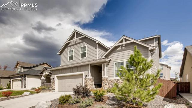 10877 Echo Canyon Drive, Colorado Springs, CO 80908 (#8578093) :: The Kibler Group