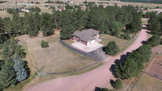 2275 S Evans Way, Franktown, CO 80116 (#8579070) :: CC Signature Group