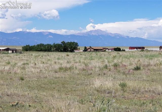 16750 Rabbit Track Trail, Colorado Springs, CO 80930 (#8579541) :: 8z Real Estate