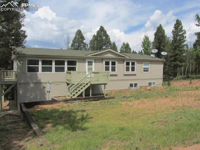 11 Insmont Lane, Florissant, CO 80816 (#8580798) :: Tommy Daly Home Team